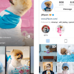 IGTV App--Instagram's Video App for Long Form Vertical Videos
