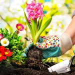 Super Tips To Prepare Your Garden For Spring