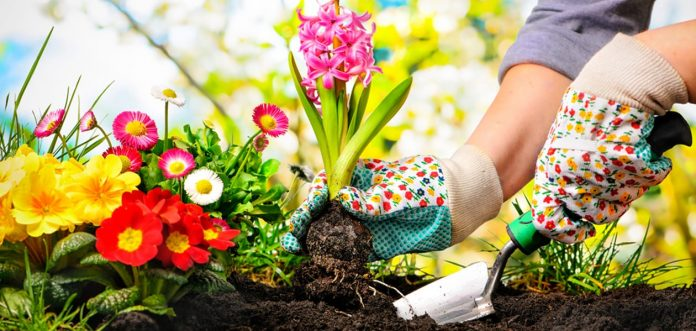 Prepare Your Garden For Spring