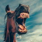 蛀牙的症狀和治療方法