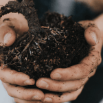 Simplified Soil - How to Make Gardening Easier
