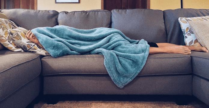 Buy A Sofa Cum Bed Set