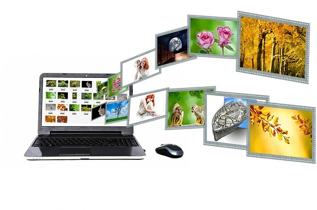 internet, content, portal