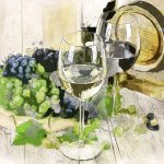 The Wine Making Process – Red Wines and White Wines