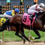Top Five Online Horse Racing Betting Apps
